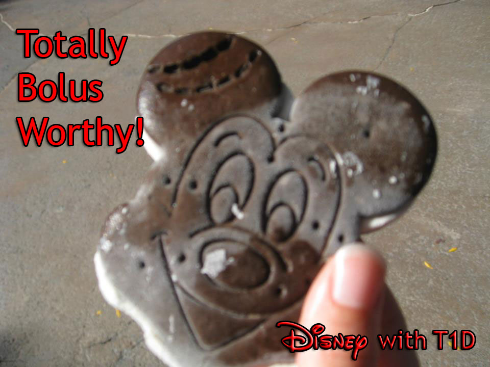 Disney with T1D - Food, Beverage, and SWAG Boluses